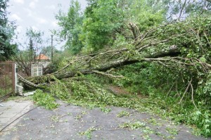 How being proactive can limit damage to your holiday home during extreme weather